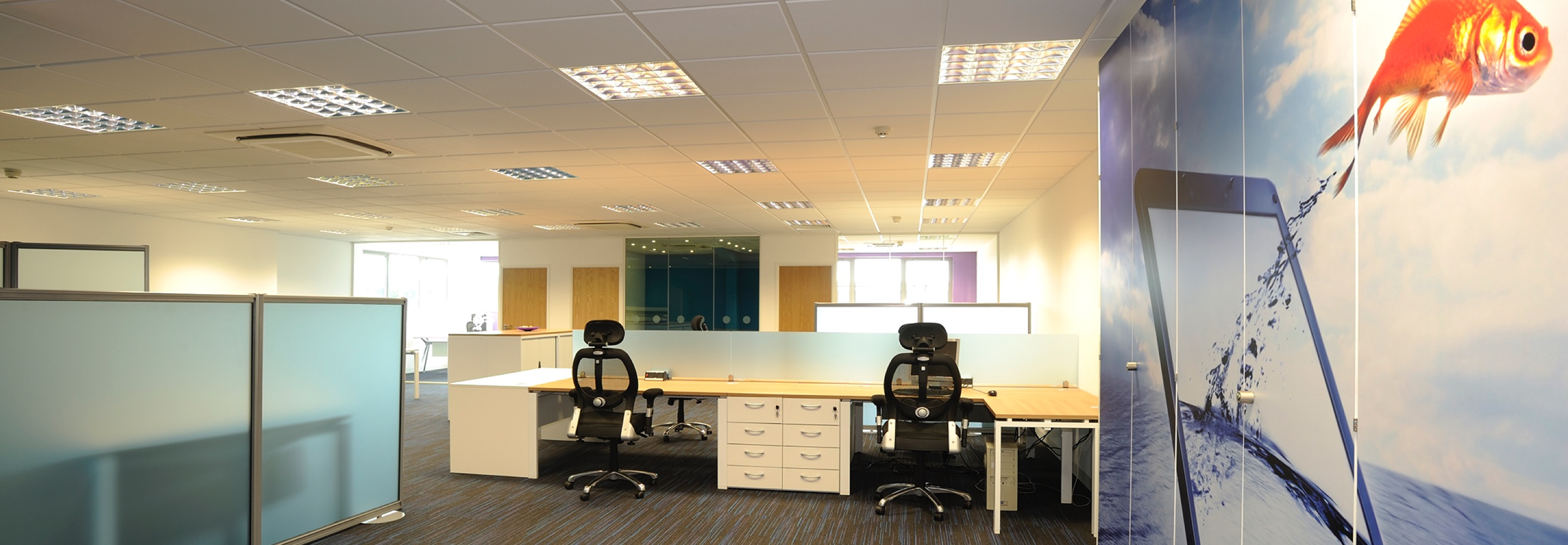Corporate Interiors Design and Build - modern office layout with wall graphic